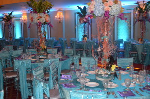 Quinces Grand Salon Reception Hall 7