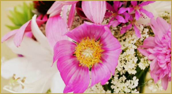 03_flowers