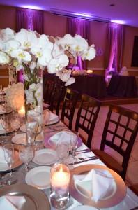 Gazebo Ceremony, Wedding Reception, Ciudamar, Grand Salon Ballroom at Killian Palms Country Club, Mini Reception, Grand Salon Reception Hall (37)